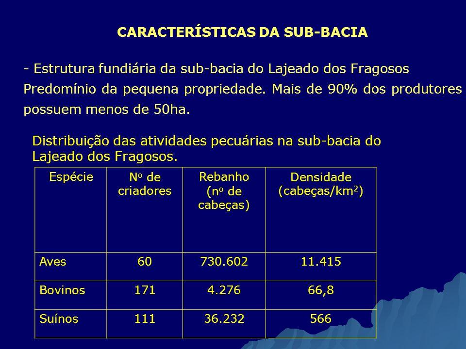 CARACTERÍSTICAS DA SUB-BACIA - - Estrutura fundiária da sub-bacia do Lajeado dos Fragosos Predomínio da pequena propriedade. Mais de 90% dos produtore