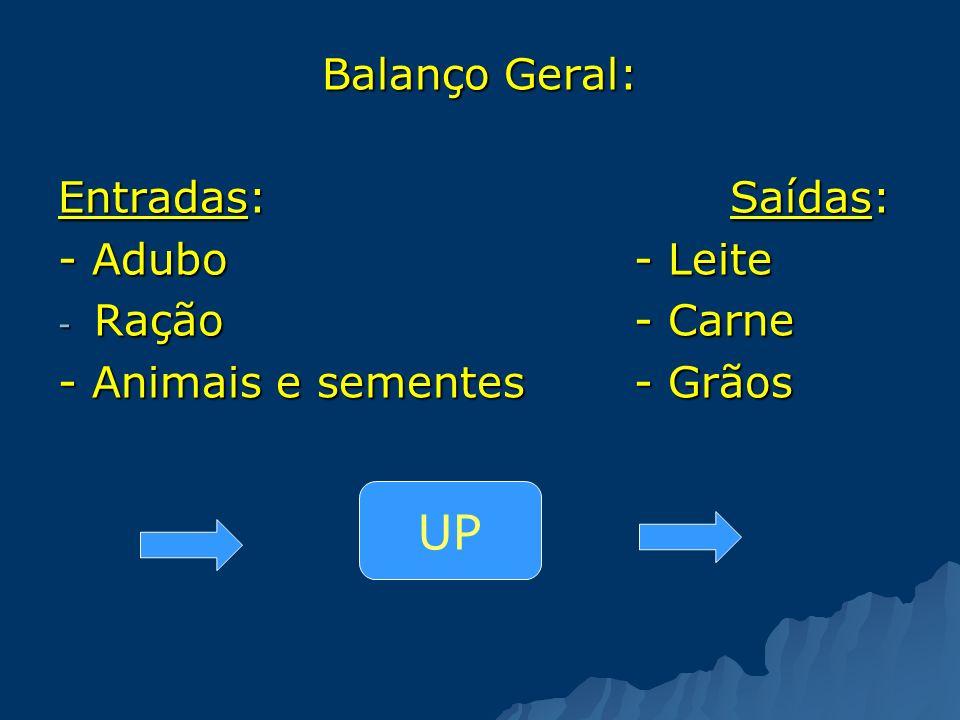 Balanço Geral: Entradas:Saídas: - Adubo - Leite - Ração- Carne - Animais e sementes- Grãos UP