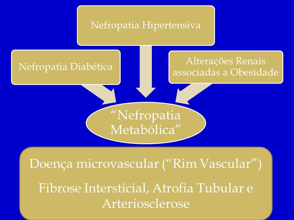 Nefropatia Metabólica Nefropatia Diabética Nefropatia Hipertensiva Alterações Renais associadas a Obesidade Doença microvascular (Rim Vascular) Fibros