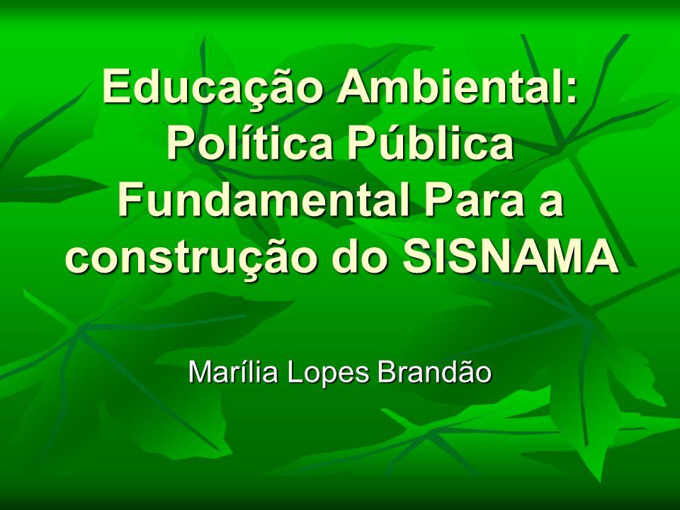 Educação Ambiental: Política Pública Fundamental Para a construção do SISNAMA Marília Lopes Brandão