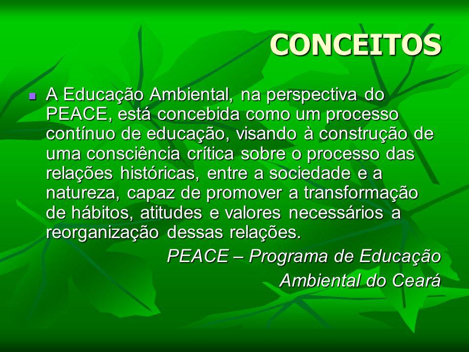 CONCEITOS A Educação Ambiental, na perspectiva do PEACE, está concebida como um processo contínuo de educação, visando à construção de uma consciência