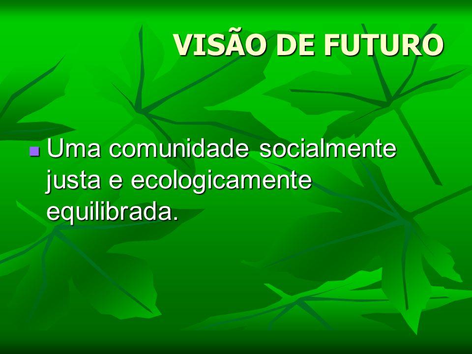 VISÃO DE FUTURO Uma comunidade socialmente justa e ecologicamente equilibrada. Uma comunidade socialmente justa e ecologicamente equilibrada.