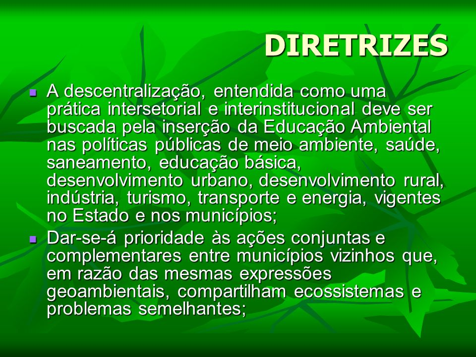DIRETRIZES A descentralização, entendida como uma prática intersetorial e interinstitucional deve ser buscada pela inserção da Educação Ambiental nas