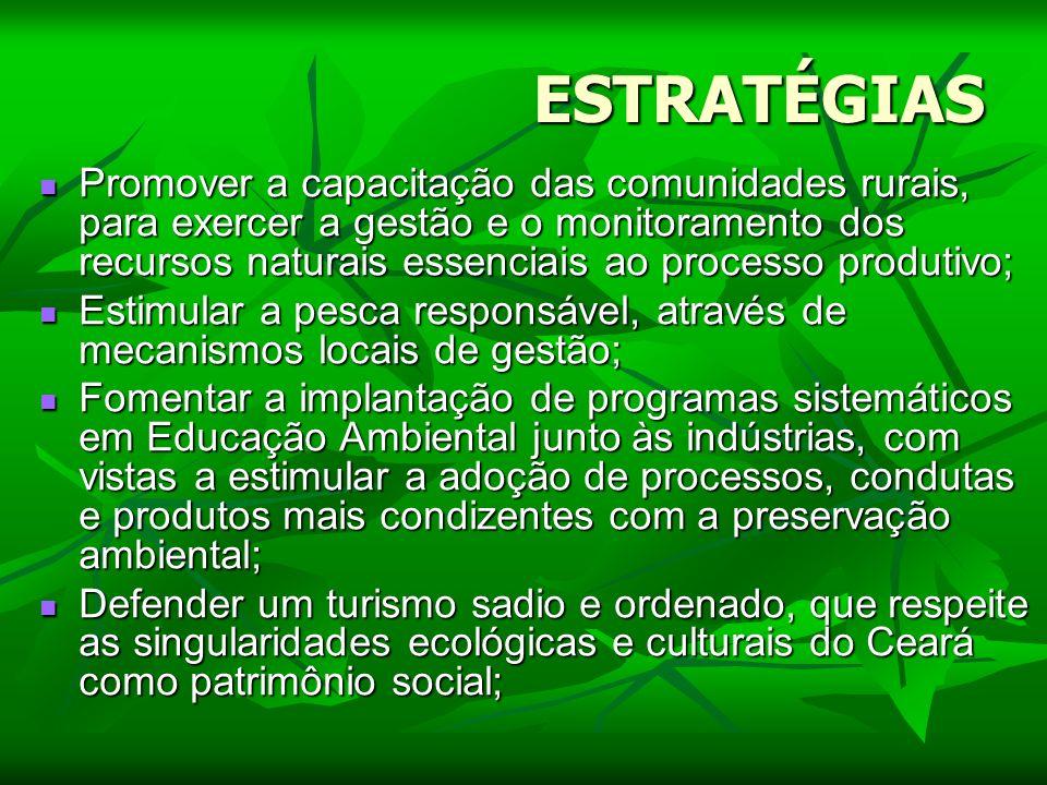 ESTRATÉGIAS Promover a capacitação das comunidades rurais, para exercer a gestão e o monitoramento dos recursos naturais essenciais ao processo produt