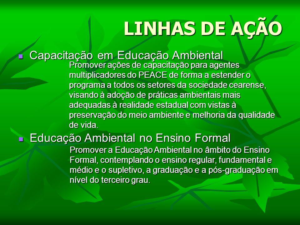 LINHAS DE AÇÃO Capacitação em Educação Ambiental Capacitação em Educação Ambiental Educação Ambiental no Ensino Formal Educação Ambiental no Ensino Fo