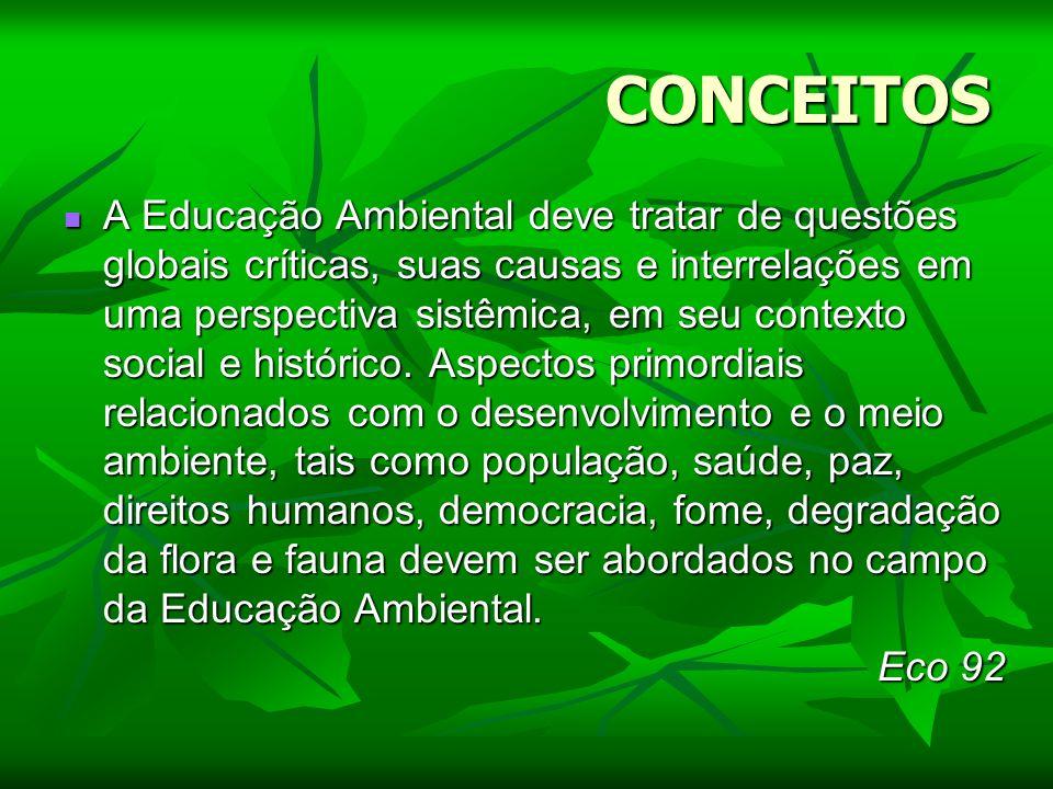 CONCEITOS A Educação Ambiental deve tratar de questões globais críticas, suas causas e interrelações em uma perspectiva sistêmica, em seu contexto soc