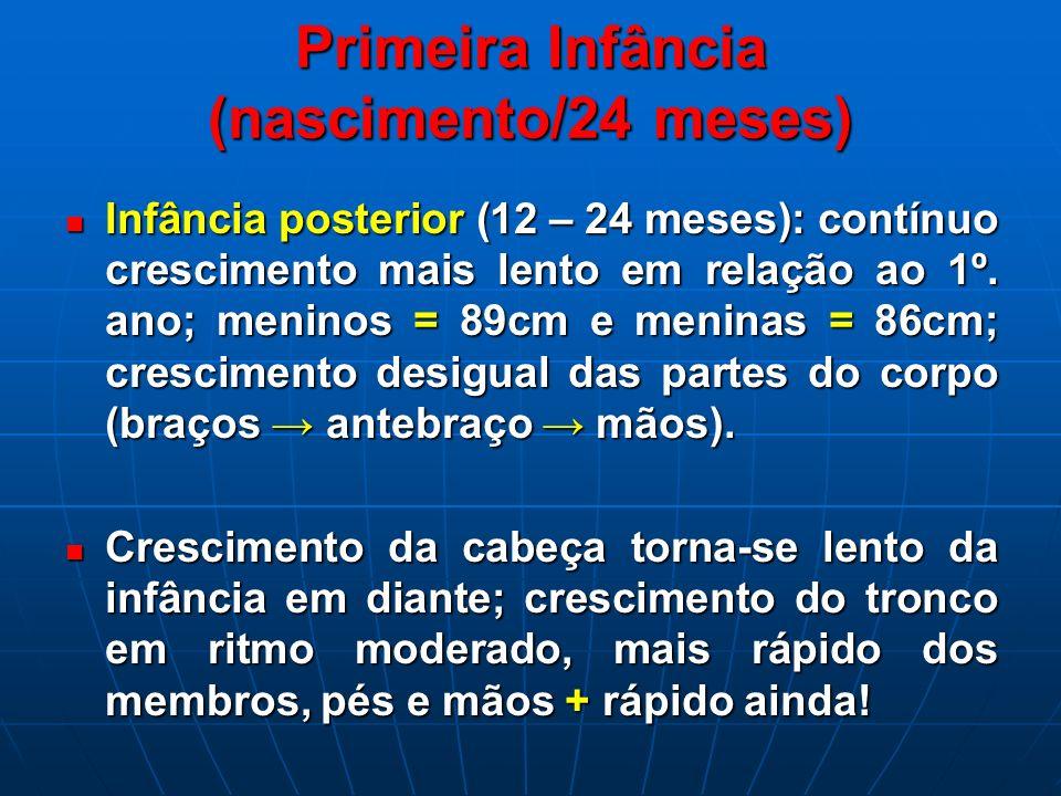 Primeira Infância (nascimento/24 meses) Infância posterior (12 – 24 meses): contínuo crescimento mais lento em relação ao 1º. ano; meninos = 89cm e me
