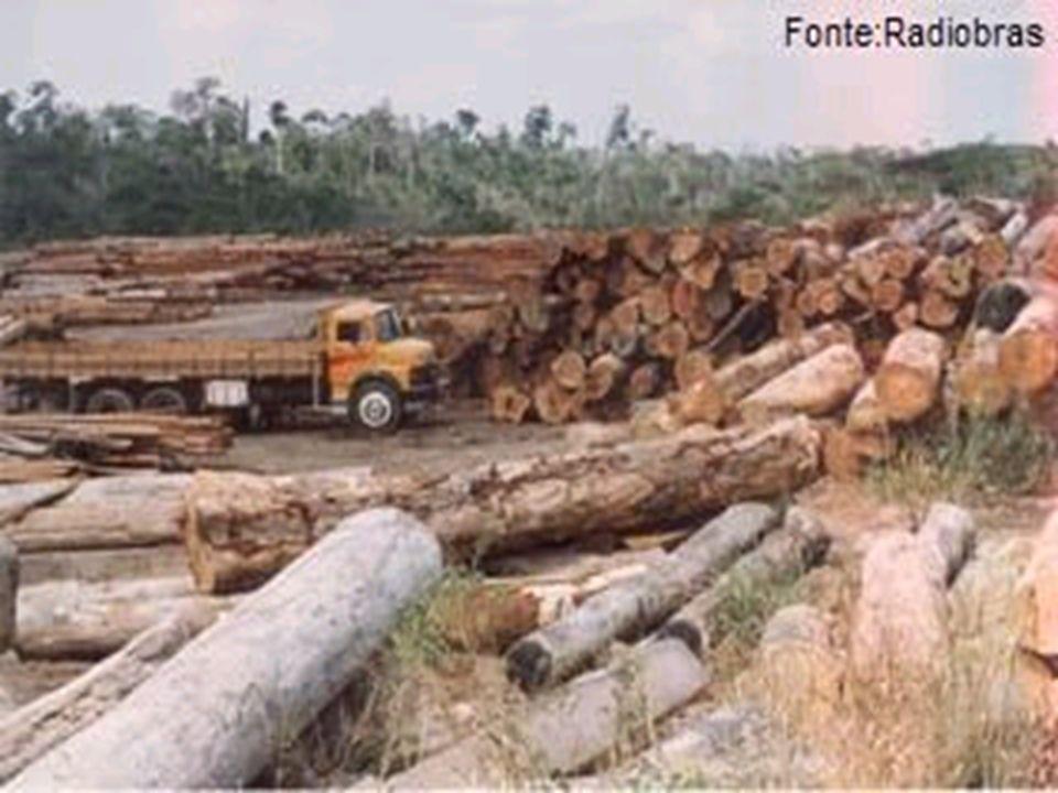 Regulação da propriedade da terra no Brasil I Lei de Terras do Brasil (1850) - semelhante à dos EUA e Austrália – visa restringir acesso à terra no mundo colonial.