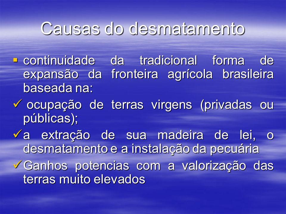 Causas do desmatamento continuidade da tradicional forma de expansão da fronteira agrícola brasileira baseada na: continuidade da tradicional forma de