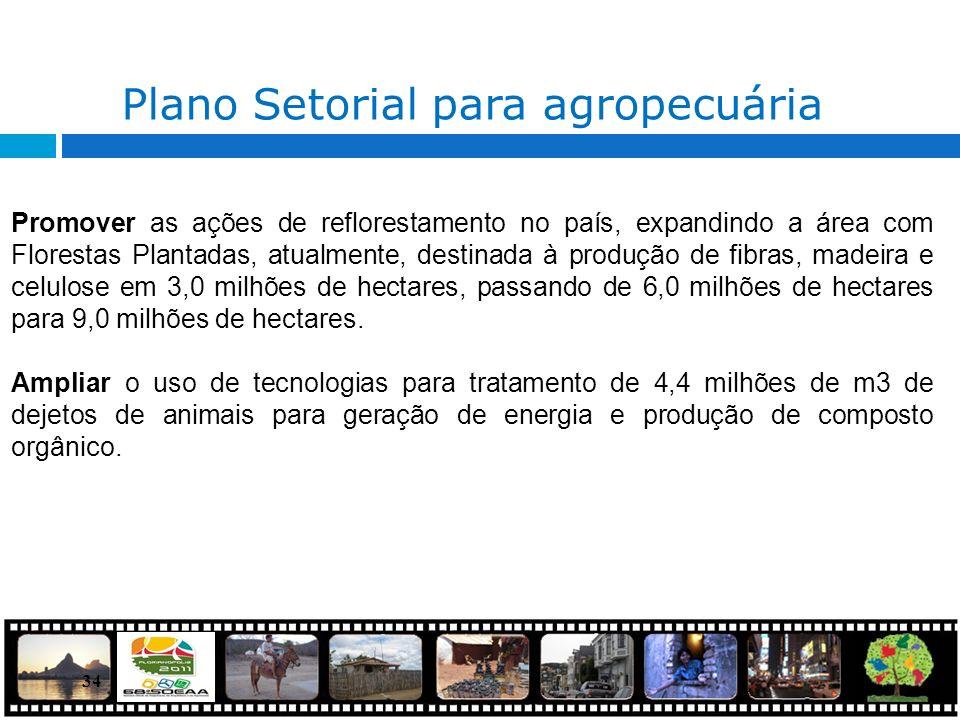 34 Plano Setorial para agropecuária Promover as ações de reflorestamento no país, expandindo a área com Florestas Plantadas, atualmente, destinada à p
