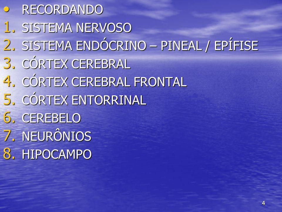 4 RECORDANDO RECORDANDO 1. SISTEMA NERVOSO 2. SISTEMA ENDÓCRINO – PINEAL / EPÍFISE 3. CÓRTEX CEREBRAL 4. CÓRTEX CEREBRAL FRONTAL 5. CÓRTEX ENTORRINAL