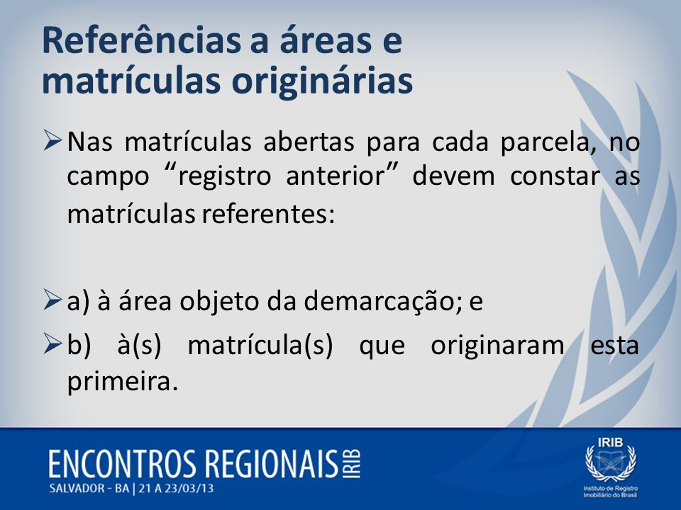 Referências a áreas e matrículas originárias Nas matrículas abertas para cada parcela, no campo registro anterior devem constar as matrículas referent