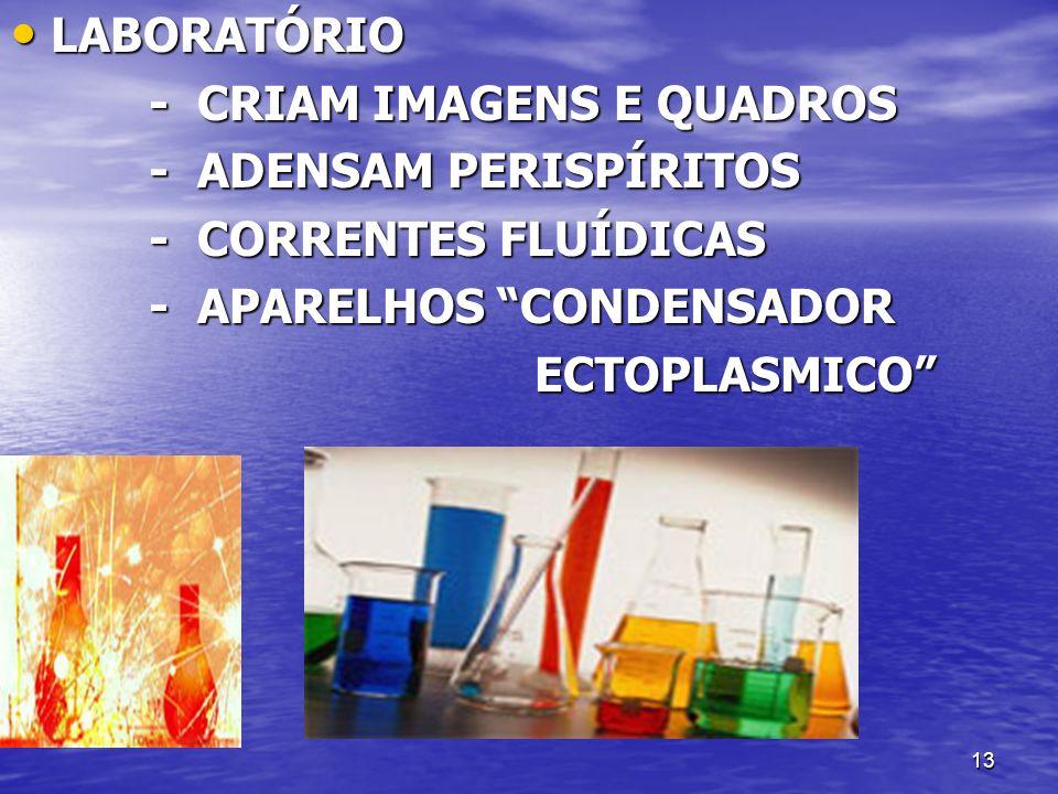 13 LABORATÓRIO LABORATÓRIO - CRIAM IMAGENS E QUADROS - CRIAM IMAGENS E QUADROS - ADENSAM PERISPÍRITOS - ADENSAM PERISPÍRITOS - CORRENTES FLUÍDICAS - C