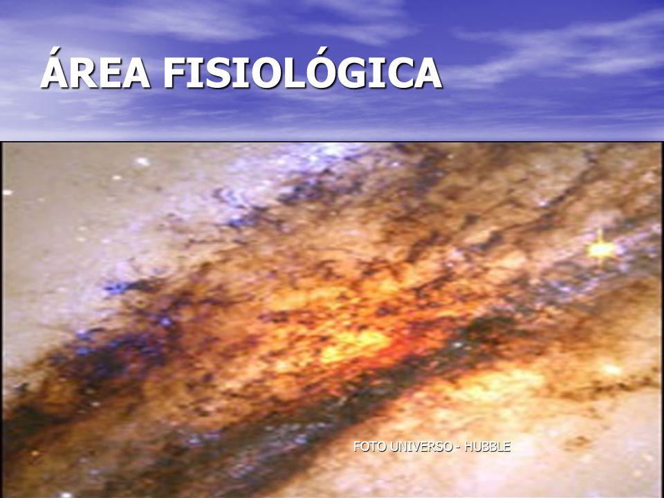 28 ÁREA FISIOLÓGICA FOTO UNIVERSO - HUBBLE