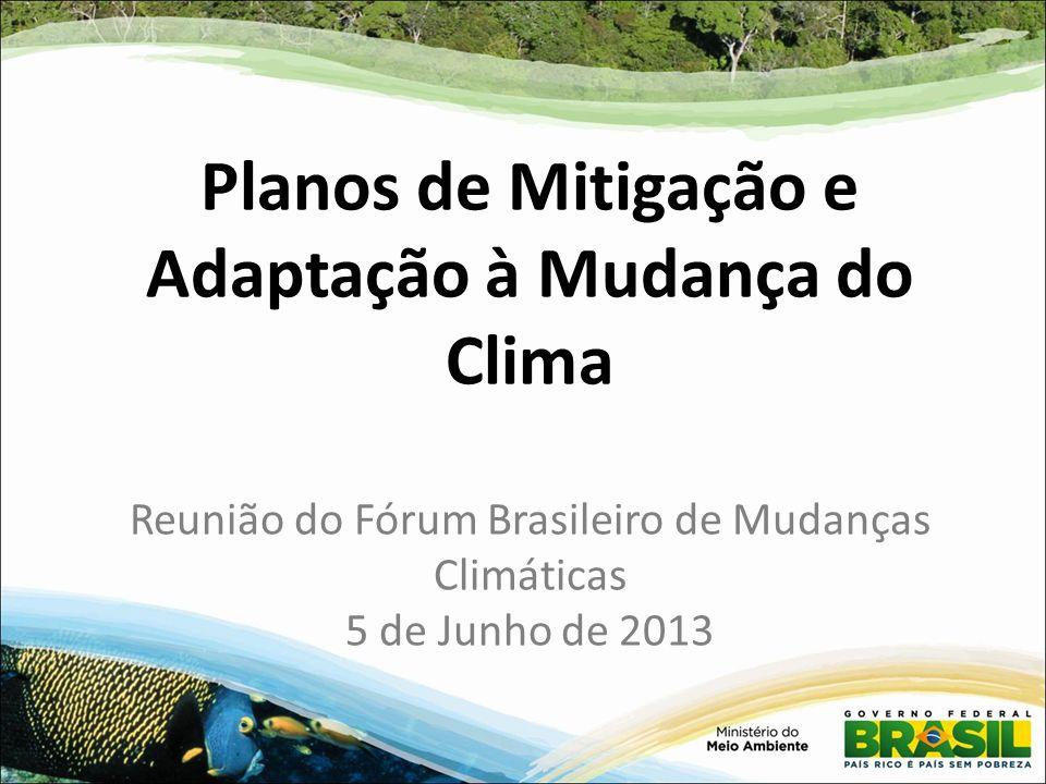 Planos de Mitigação e Adaptação à Mudança do Clima Reunião do Fórum Brasileiro de Mudanças Climáticas 5 de Junho de 2013