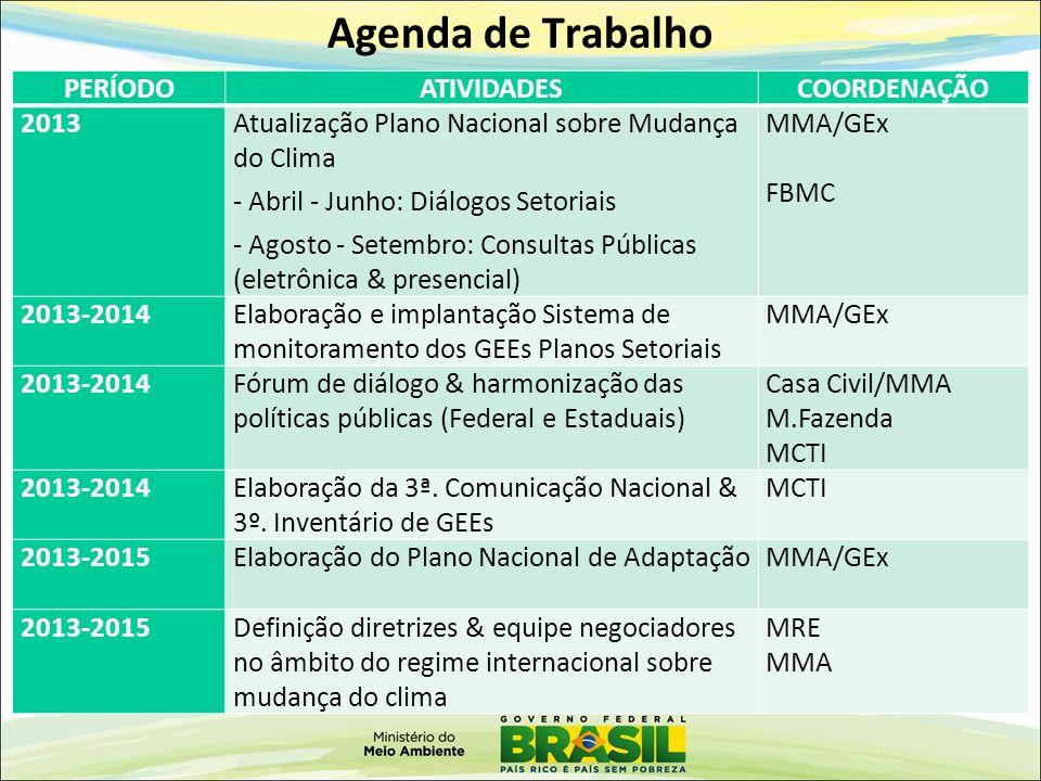 Agenda de Trabalho PERÍODOATIVIDADESCOORDENAÇÃO 2013Atualização Plano Nacional sobre Mudança do Clima - Abril - Junho: Diálogos Setoriais - Agosto - S