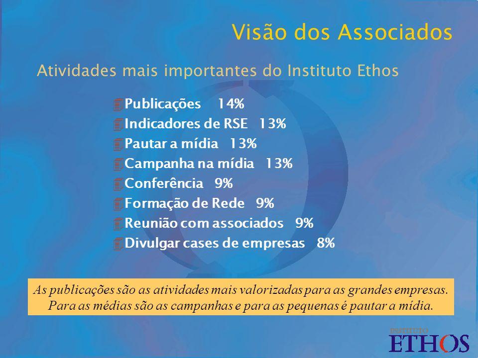 Atividades mais importantes do Instituto Ethos As publicações são as atividades mais valorizadas para as grandes empresas.
