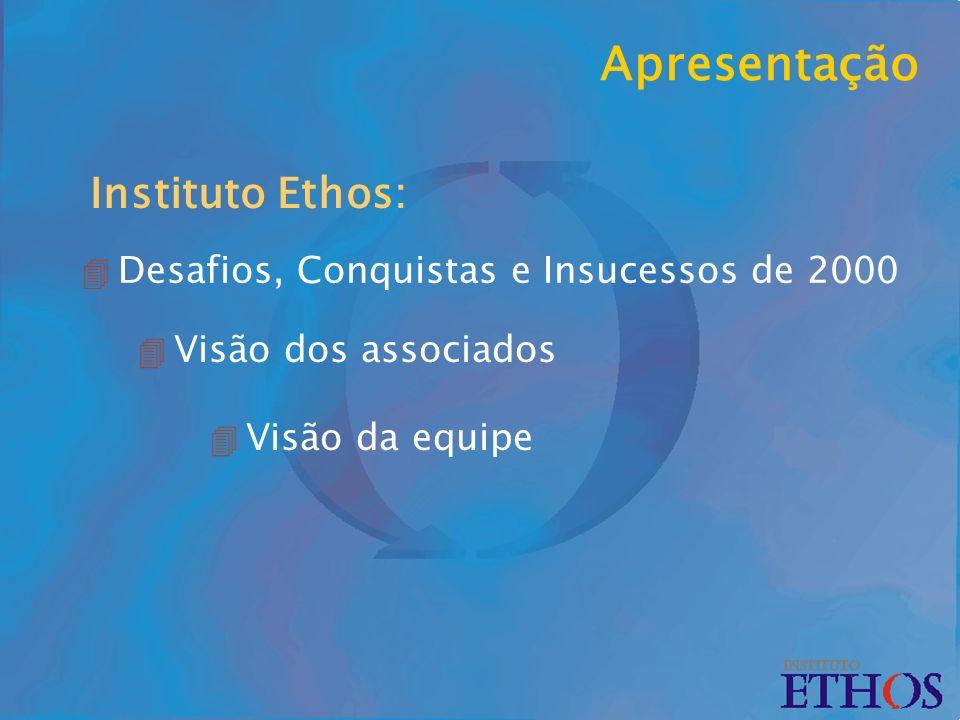Apresentação 4 Desafios, Conquistas e Insucessos de 2000 Instituto Ethos: 4 Visão dos associados 4 Visão da equipe