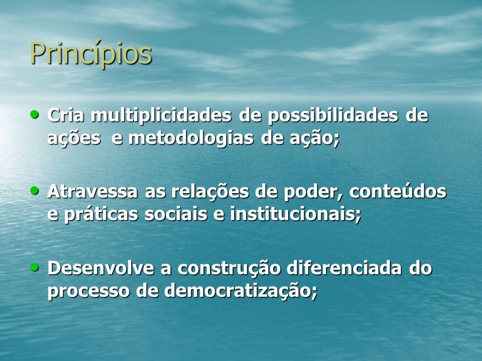 Princípios Cria multiplicidades de possibilidades de ações e metodologias de ação; Cria multiplicidades de possibilidades de ações e metodologias de a