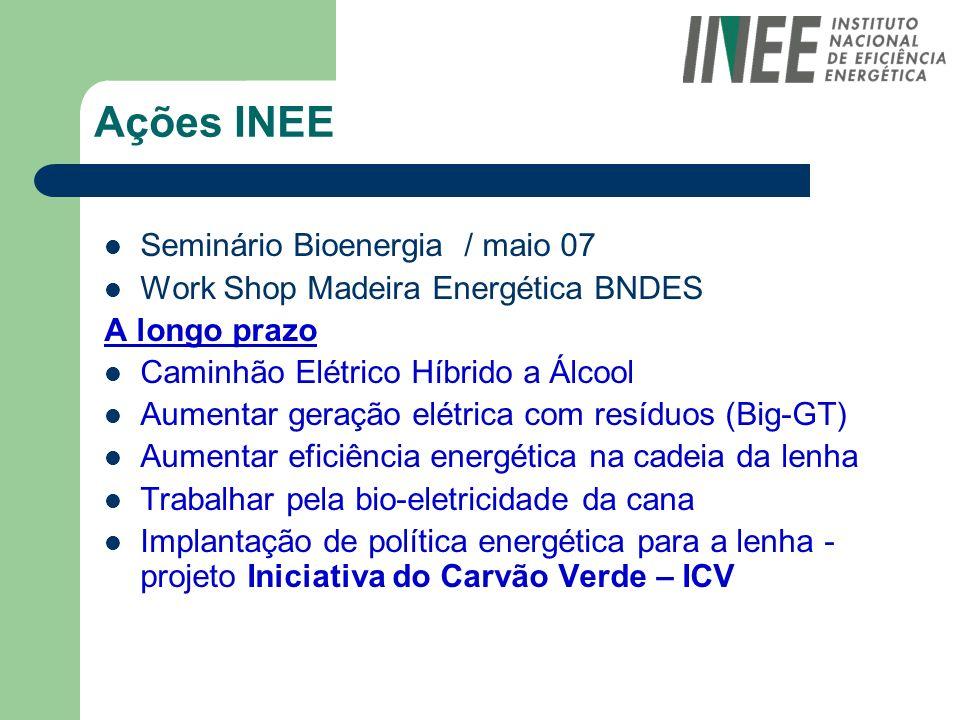 Ações INEE Seminário Bioenergia / maio 07 Work Shop Madeira Energética BNDES A longo prazo Caminhão Elétrico Híbrido a Álcool Aumentar geração elétric