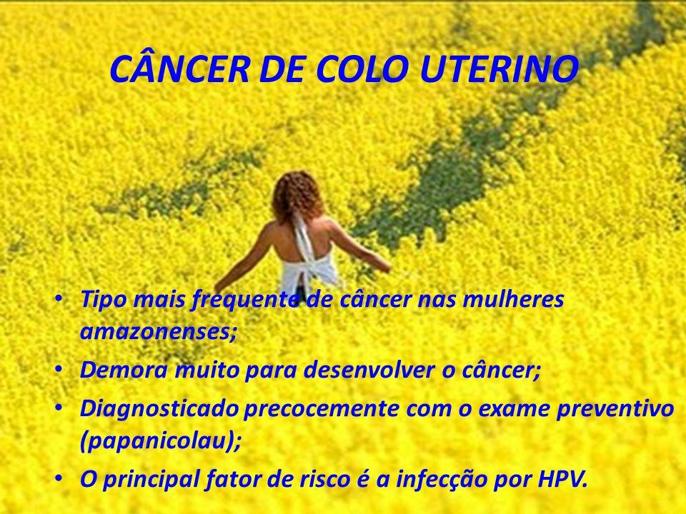 CÂNCER DE COLO UTERINO Tipo mais frequente de câncer nas mulheres amazonenses; Demora muito para desenvolver o câncer; Diagnosticado precocemente com o exame preventivo (papanicolau); O principal fator de risco é a infecção por HPV.