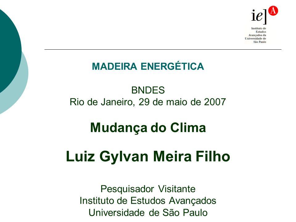 MADEIRA ENERGÉTICA BNDES Rio de Janeiro, 29 de maio de 2007 Mudança do Clima Luiz Gylvan Meira Filho Pesquisador Visitante Instituto de Estudos Avançados Universidade de São Paulo