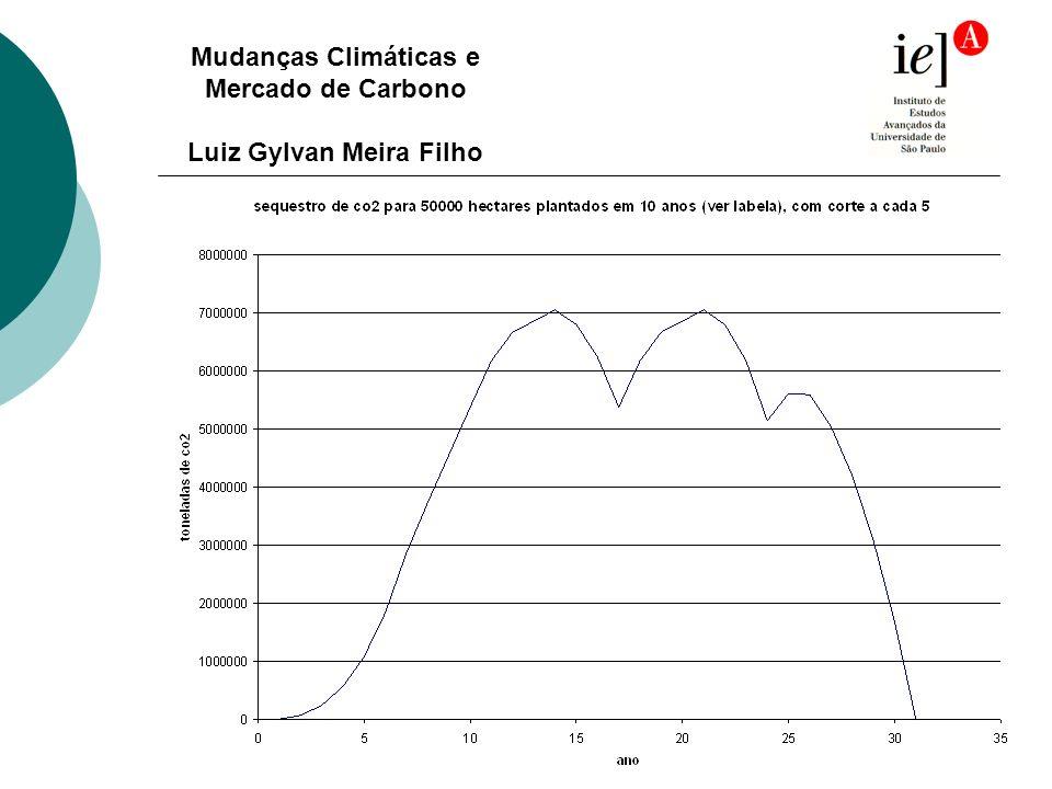 Mudanças Climáticas e Mercado de Carbono Luiz Gylvan Meira Filho
