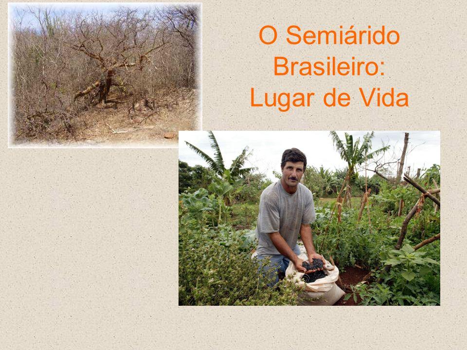 O Semiárido Brasileiro: Lugar de Vida