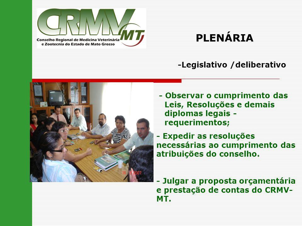 PLENÁRIA -Legislativo /deliberativo - Observar o cumprimento das Leis, Resoluções e demais diplomas legais - requerimentos; - Expedir as resoluções ne