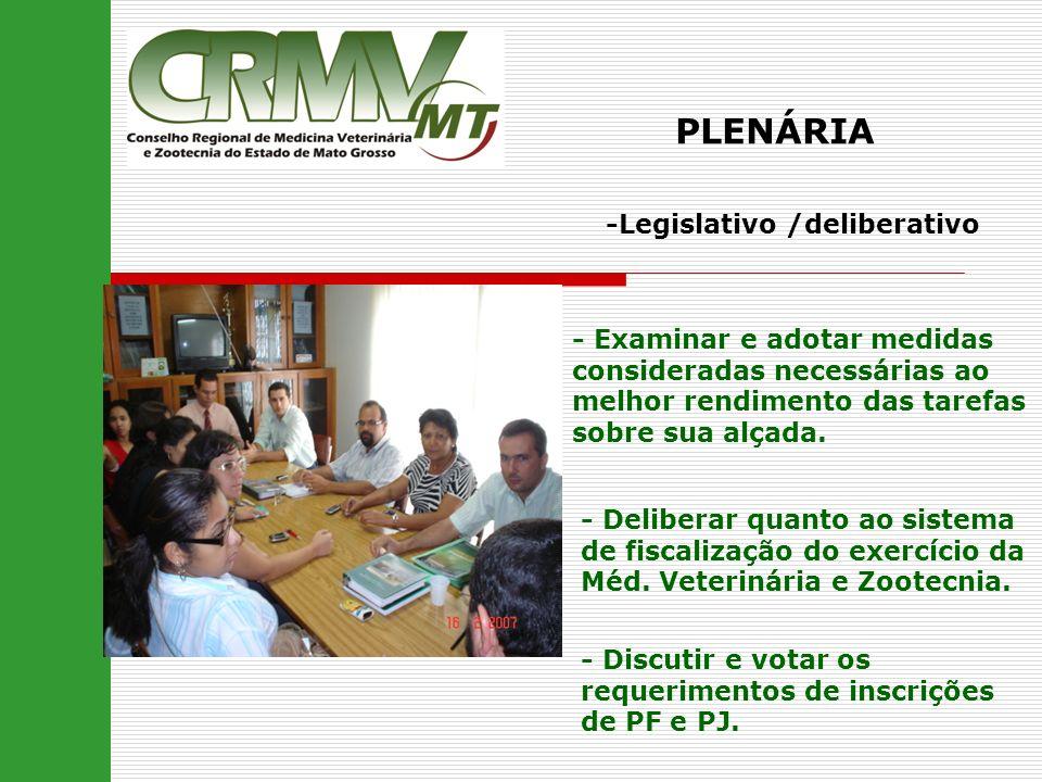 PLENÁRIA -Legislativo /deliberativo - Examinar e adotar medidas consideradas necessárias ao melhor rendimento das tarefas sobre sua alçada. - Delibera