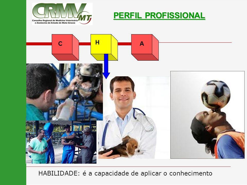 AC H PERFIL PROFISSIONAL HABILIDADE: é a capacidade de aplicar o conhecimento