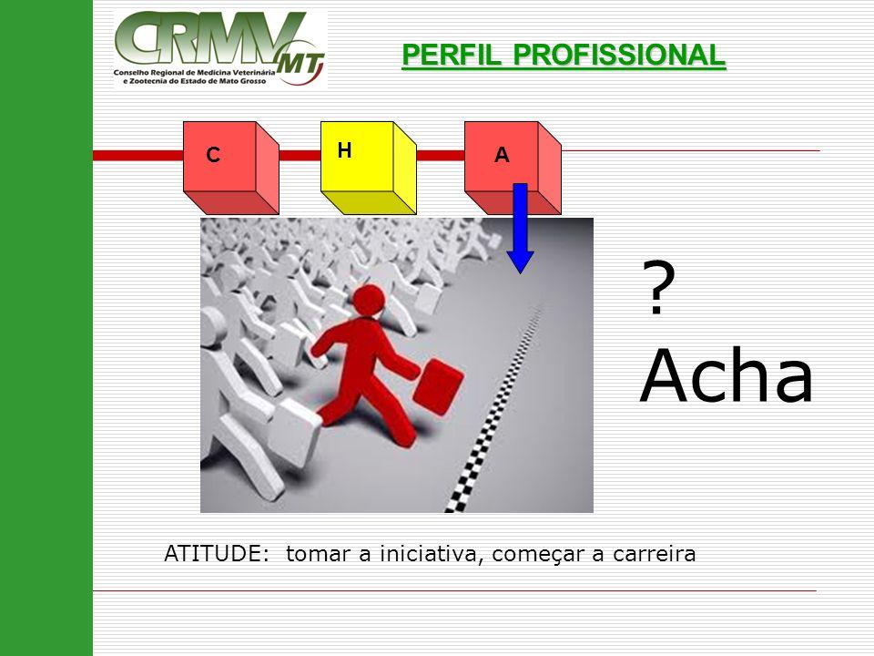 AC H PERFIL PROFISSIONAL ATITUDE: tomar a iniciativa, começar a carreira ? Acha