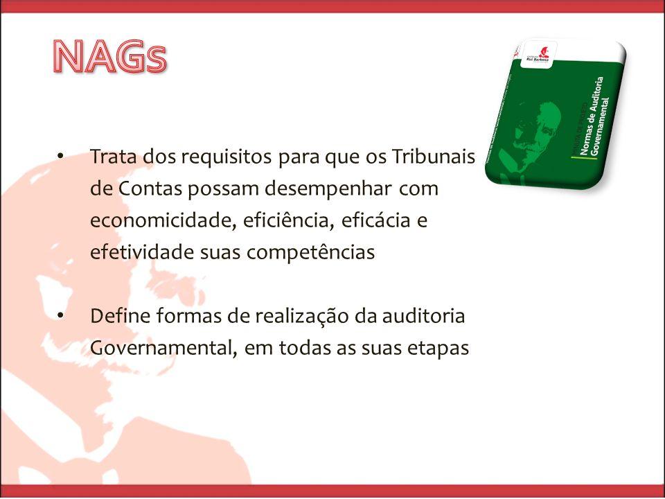 Trata dos requisitos para que os Tribunais de Contas possam desempenhar com economicidade, eficiência, eficácia e efetividade suas competências Define formas de realização da auditoria Governamental, em todas as suas etapas