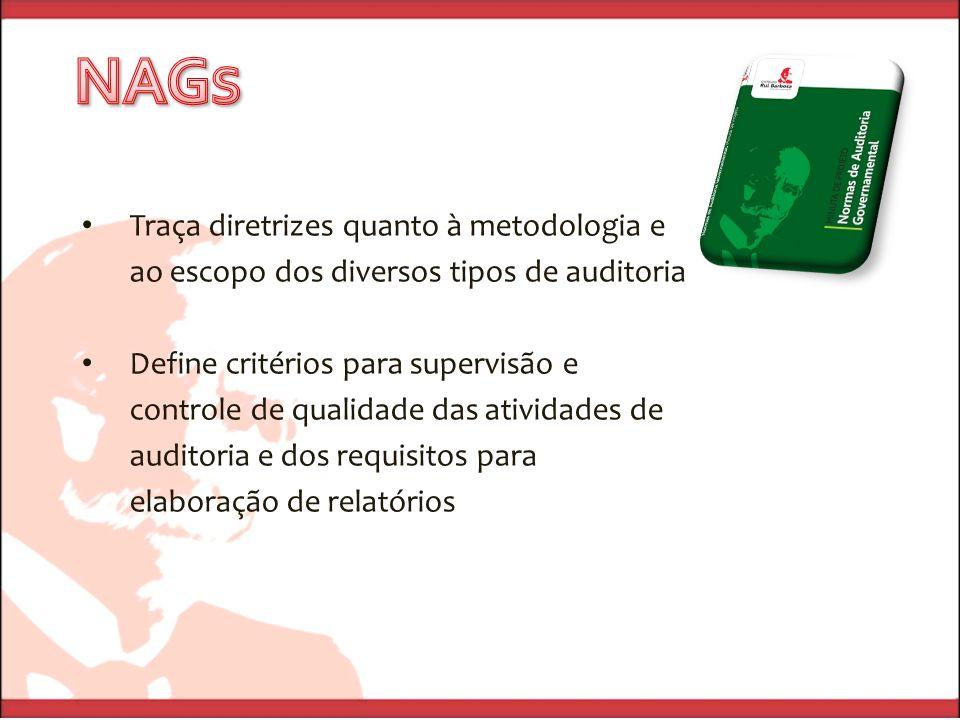 Traça diretrizes quanto à metodologia e ao escopo dos diversos tipos de auditoria Define critérios para supervisão e controle de qualidade das atividades de auditoria e dos requisitos para elaboração de relatórios