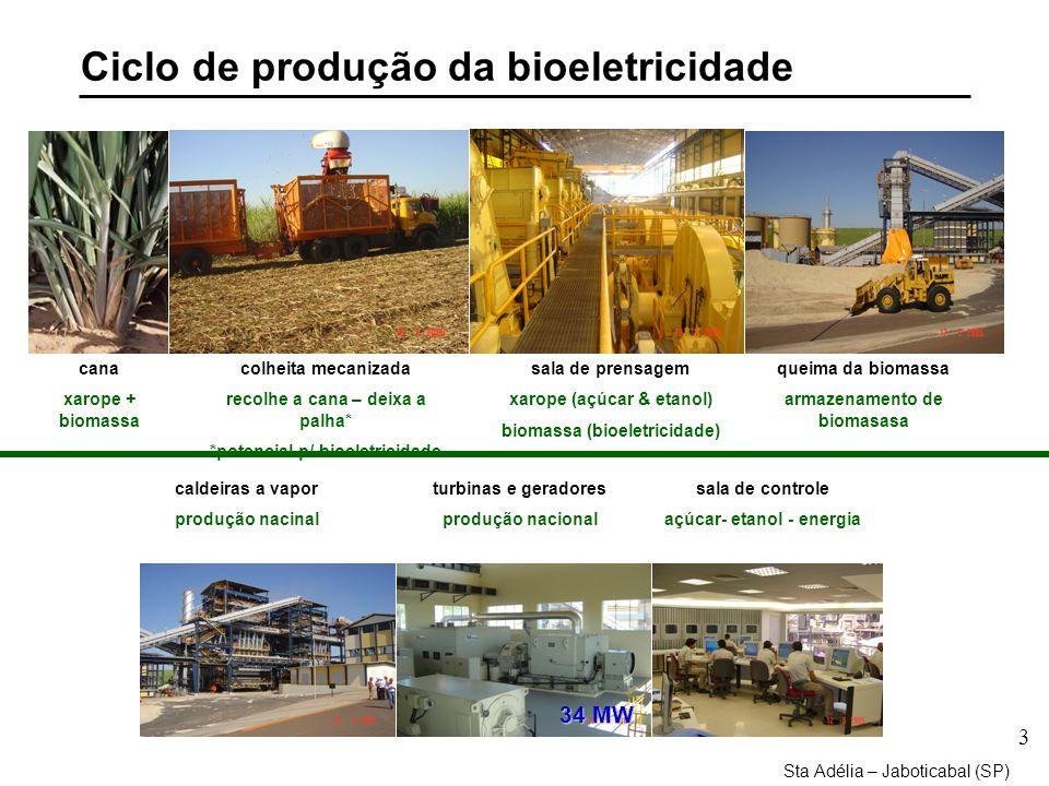 3 Ciclo de produção da bioeletricidade Sta Adélia – Jaboticabal (SP) cana xarope + biomassa queima da biomassa armazenamento de biomasasa sala de prensagem xarope (açúcar & etanol) biomassa (bioeletricidade) colheita mecanizada recolhe a cana – deixa a palha* *potencial p/ bioeletricidade caldeiras a vapor produção nacinal sala de controle açúcar- etanol - energia turbinas e geradores produção nacional 34 MW