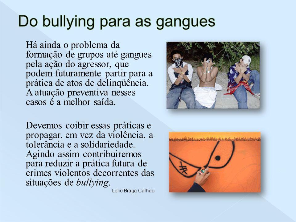 Há ainda o problema da formação de grupos até gangues pela ação do agressor, que podem futuramente partir para a prática de atos de delinqüência. A at
