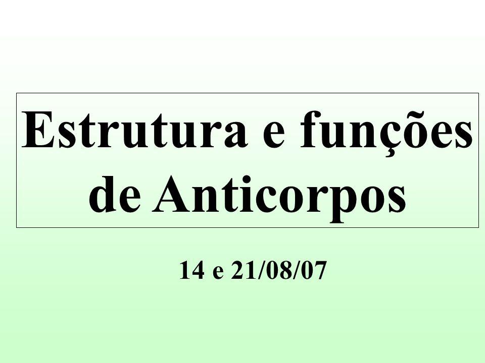 Estrutura e funções de Anticorpos 14 e 21/08/07