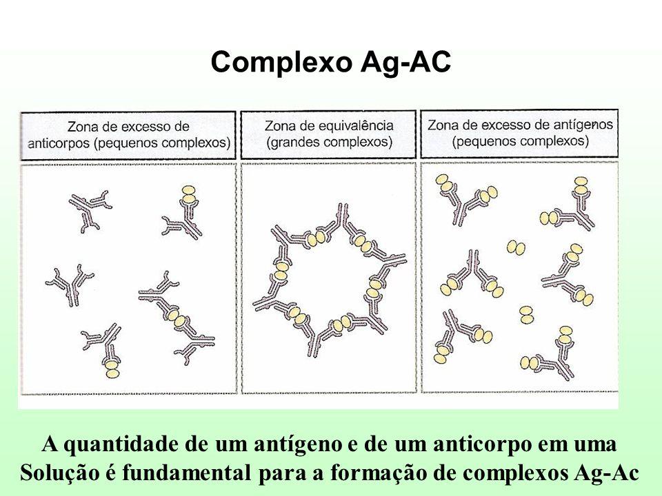 Complexo Ag-AC A quantidade de um antígeno e de um anticorpo em uma Solução é fundamental para a formação de complexos Ag-Ac
