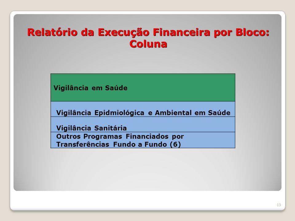 Relatório da Execução Financeira por Bloco: Coluna 13 Vigilância em Saúde Vigilância Epidmiológica e Ambiental em Saúde Vigilância Sanitária Outros Pr