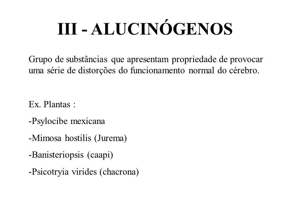 III - ALUCINÓGENOS Grupo de substâncias que apresentam propriedade de provocar uma série de distorções do funcionamento normal do cérebro. Ex. Plantas