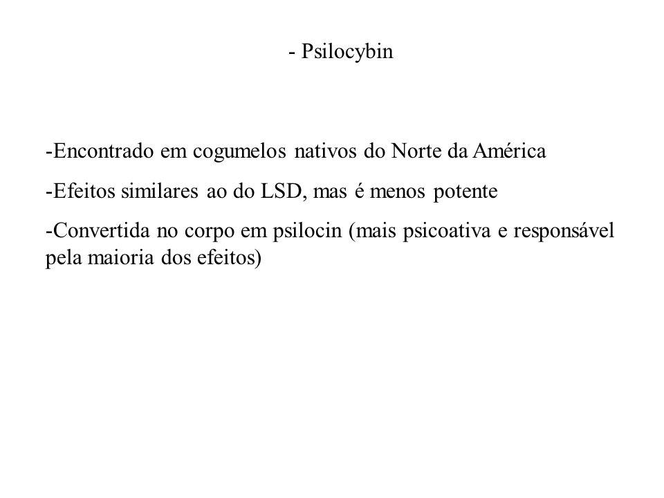 - Psilocybin -Encontrado em cogumelos nativos do Norte da América -Efeitos similares ao do LSD, mas é menos potente -Convertida no corpo em psilocin (