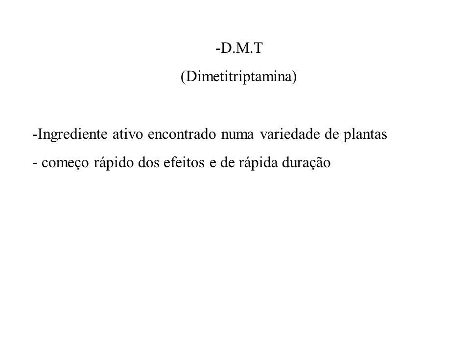 -D.M.T (Dimetitriptamina) -Ingrediente ativo encontrado numa variedade de plantas - começo rápido dos efeitos e de rápida duração