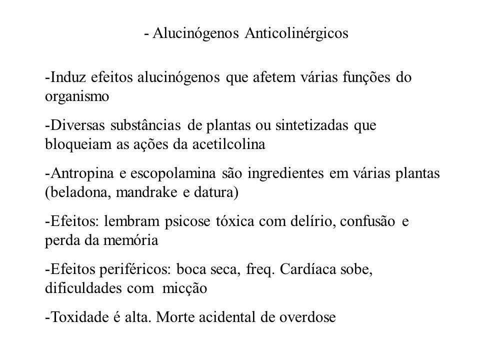 - Alucinógenos Anticolinérgicos -Induz efeitos alucinógenos que afetem várias funções do organismo -Diversas substâncias de plantas ou sintetizadas qu