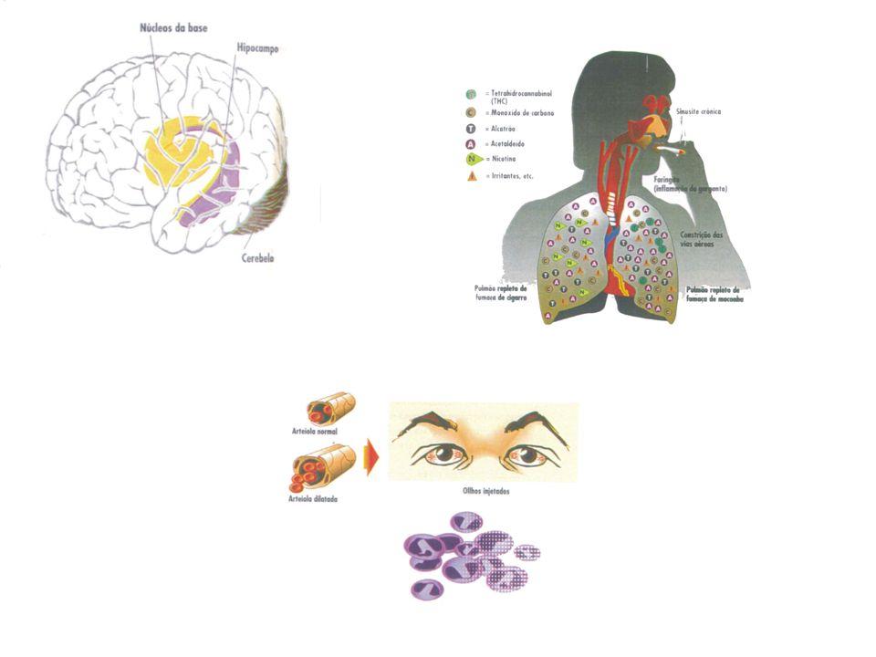 -Neurofarmacologia Age em receptor específico do cérebro (receptor canabinóide) Substância endógena cerebral que se liga a receptor canabinóide: anandamida.