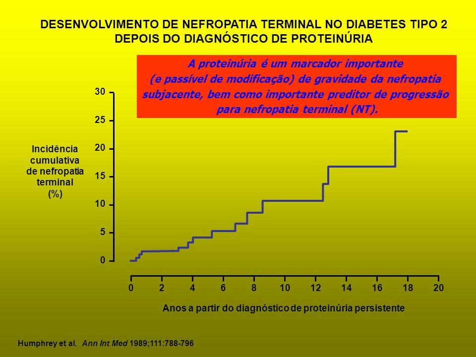 Incidência cumulativa de nefropatia terminal (%) 0 5 10 15 20 25 30 02468101214161820 Anos a partir do diagnóstico de proteinúria persistente Humphrey