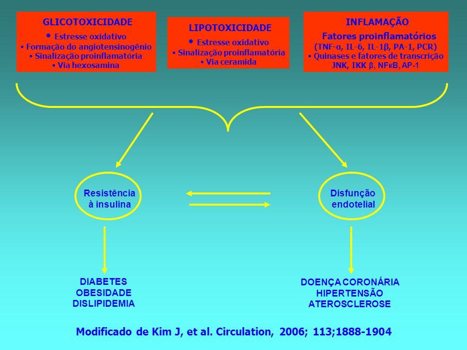 GLICOTOXICIDADE Estresse oxidativo Formação do angiotensinogênio Sinalização proinflamatória Via hexosamina LIPOTOXICIDADE Estresse oxidativo Sinaliza