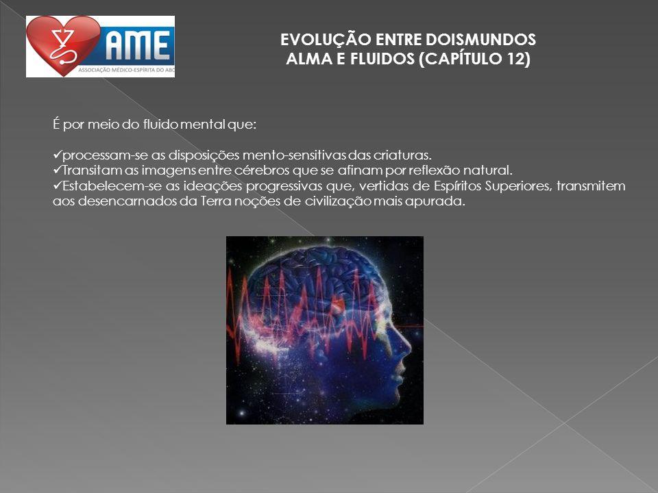 EVOLUÇÃO ENTRE DOISMUNDOS ALMA E FLUIDOS (CAPÍTULO 12) É por meio do fluido mental que: processam-se as disposições mento-sensitivas das criaturas. Tr