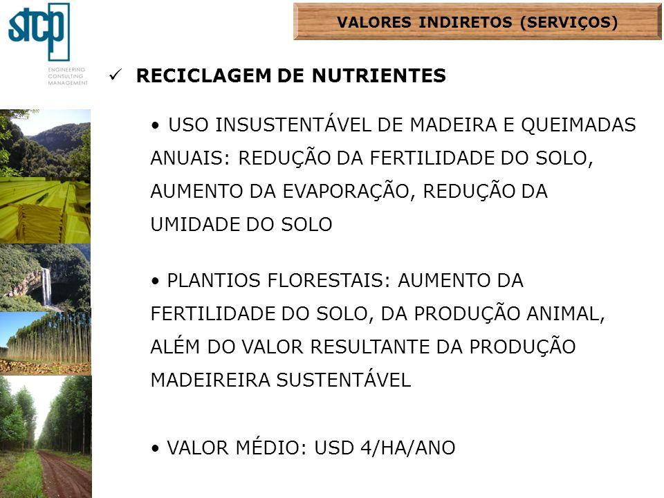 RECICLAGEM DE NUTRIENTES USO INSUSTENTÁVEL DE MADEIRA E QUEIMADAS ANUAIS: REDUÇÃO DA FERTILIDADE DO SOLO, AUMENTO DA EVAPORAÇÃO, REDUÇÃO DA UMIDADE DO