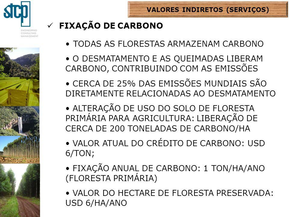 FIXAÇÃO DE CARBONO TODAS AS FLORESTAS ARMAZENAM CARBONO O DESMATAMENTO E AS QUEIMADAS LIBERAM CARBONO, CONTRIBUINDO COM AS EMISSÕES CERCA DE 25% DAS E