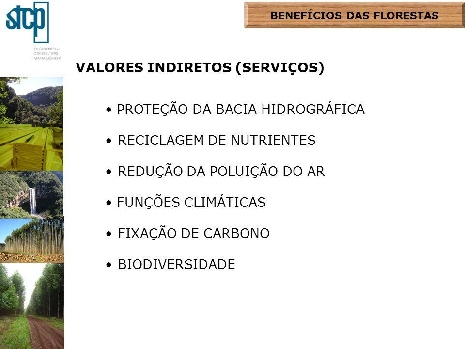 BENEFÍCIOS DAS FLORESTAS VALORES INDIRETOS (SERVIÇOS) PROTEÇÃO DA BACIA HIDROGRÁFICA RECICLAGEM DE NUTRIENTES REDUÇÃO DA POLUIÇÃO DO AR FUNÇÕES CLIMÁT